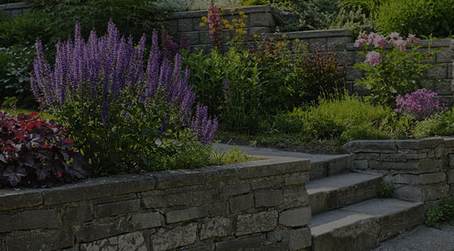 Clear Lake Hardscapes